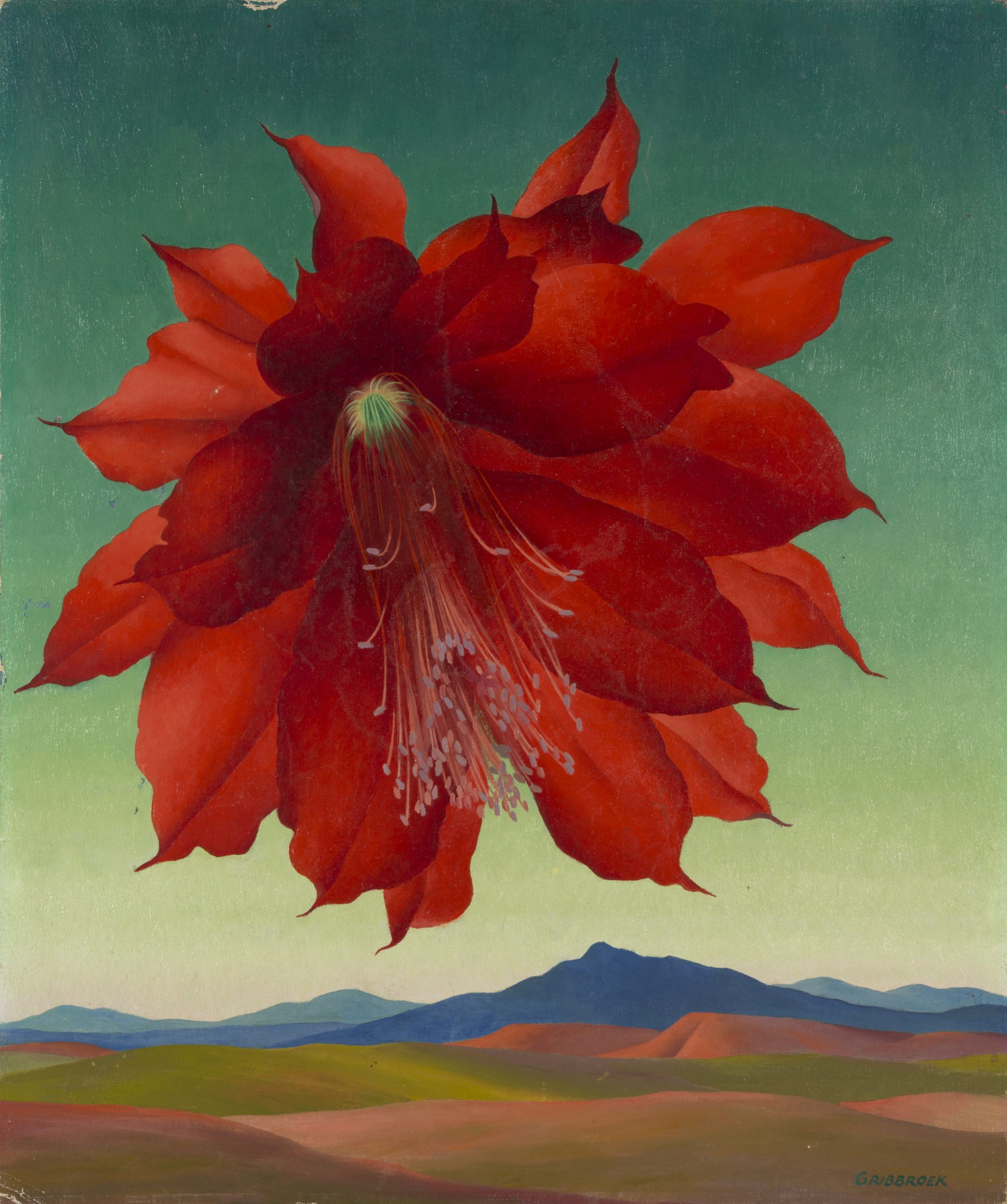 Robert Gribbroek, Epiphyllum, 1953, Oil on canvas board, Purchase with funds from the Friends of Art, Raymond Jonson Collection